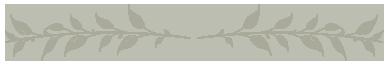 BAYSIDE FULL MOON LUMINOUS GIN